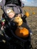 Jeremiah with his pumpkins at Curtis Orchard.